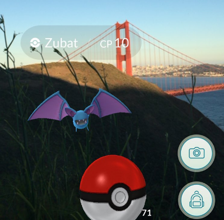 Pokemon Story | Customer Profiles For Your Business | SearchMktgPro